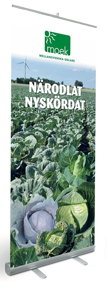Rollup_vitkål-thumbnail